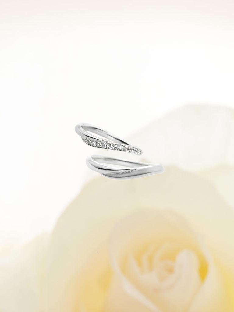 petit oiseau 結婚指輪セット